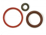 Seal Ring; Seal Ring, injector