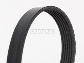 Contitech 6PK1000/V-Ribbed Belts